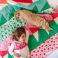 Christmas-Quilt-dog