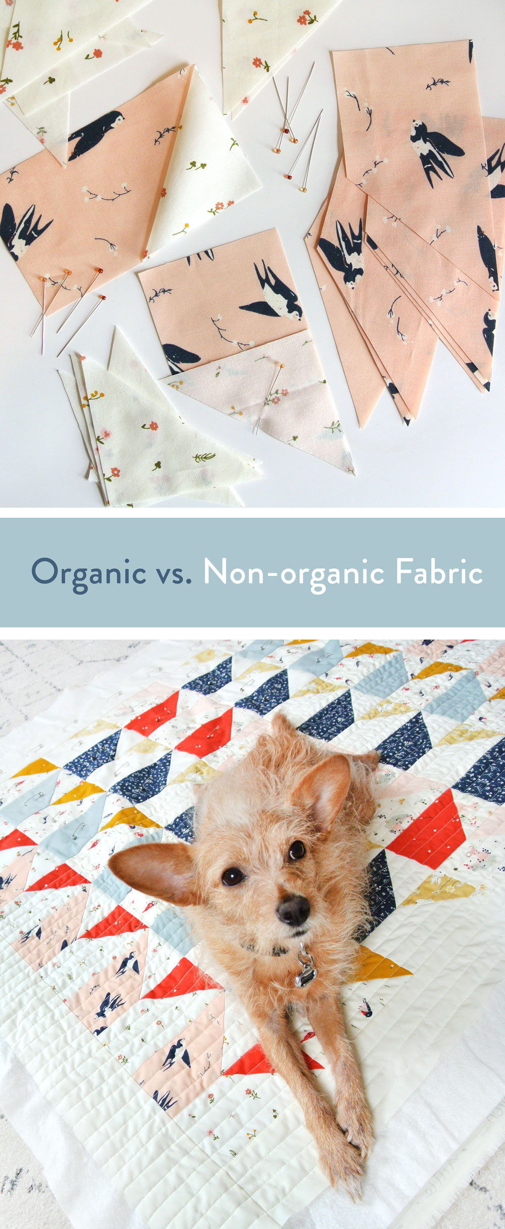 What's the Difference Between Organic Fabric and Non-Organic Fabric? | Suzy Quilts https://suzyquilts.com/organic-fabric