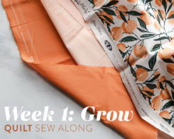 Grow Quilt Sew Along: Week 1: Pick Your Fabric