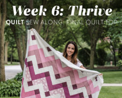 Thrive Quilt Sew Along: Week 6: Final Quilt Top